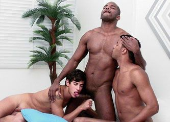 Black Stud Vids torrent